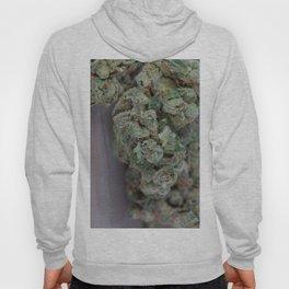 Dr. Who Medicinal Medical Marijuana Hoody