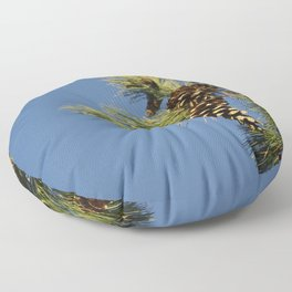 Pine cones and branches against a blue autumn sky Floor Pillow