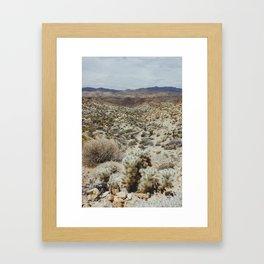 Joshua Tree 5 Framed Art Print