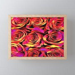 Scarlet Golden Roses Framed Mini Art Print
