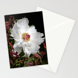 De Light Full Stationery Cards
