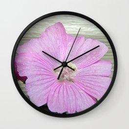 Pink Musk Mallow Pollen Overflow Wall Clock