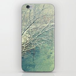Winter Sun  iPhone Skin