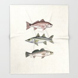 """Inshore Slam!"" by Amber Marine ~ Redfish, Snook, & Trout Watercolor Illustration, (Copyright 2013) Throw Blanket"