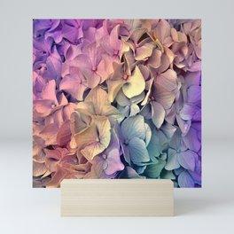 Soft Multi Color Hydrangea Mini Art Print