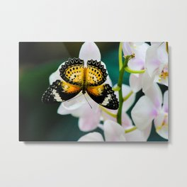 Tamil Lacewing Butterfly on Pink Orchids Metal Print