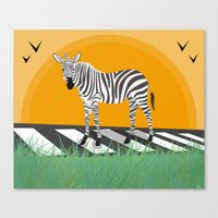 zebra Canvas Prints featuring Zebra by Nir P