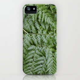 Fern iPhone Case
