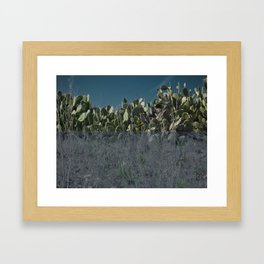night cacti || collage Framed Art Print