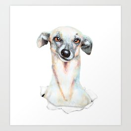 Doggy dog Art Print