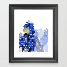 Grape Hyacinth Framed Art Print