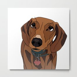 Mabel the mini Dachshund Metal Print