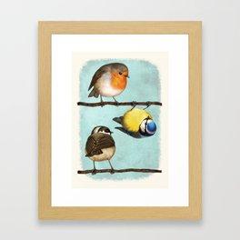 Three Little Birbs - Blue Framed Art Print