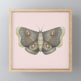 papillon de nuit Framed Mini Art Print