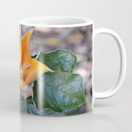 Fremontodendron Blossom Coffee Mug