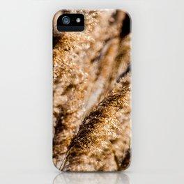 Brown Reeds iPhone Case