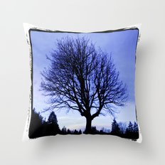WinterMorning Throw Pillow