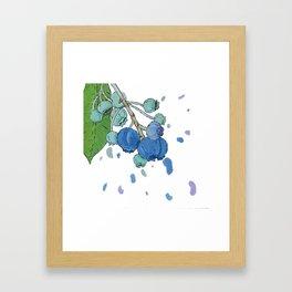 Blueberry Splatter Framed Art Print