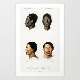 Human race illustrated by Charles Dessalines D Orbigny (1806-1876) Art Print