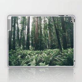 Forest XXV Laptop & iPad Skin