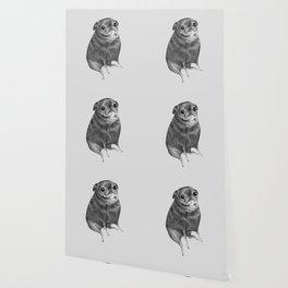 Sweet Black Pug Wallpaper