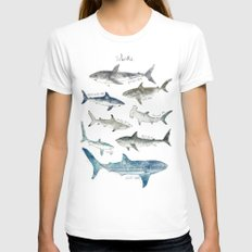 Sharks Womens Fitted Tee MEDIUM White