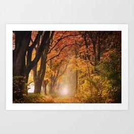 Autumn Fall Forest Path -  Nature Landscape Photography Art Print