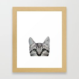 Cat, American Short hair, illustration original painting print Framed Art Print