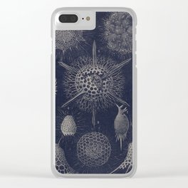 Vintage Radiolaria Diagram Clear iPhone Case