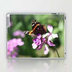 Butterfly and Phlox Laptop & iPad Skin