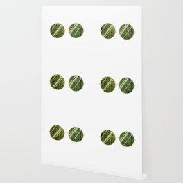 Olive Univese Glasses Wallpaper