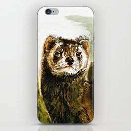 European Polecat iPhone Skin
