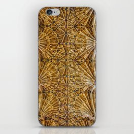 Fan Vaulted Ceiling iPhone Skin