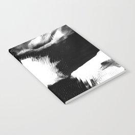 hide Notebook