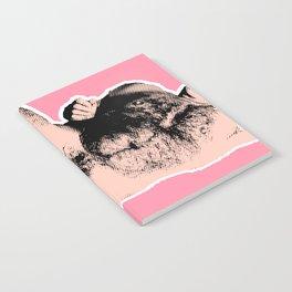 Nude Notebook
