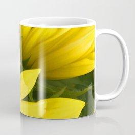 Sunshine Yellow Daisy Flower Close-Up Photo Coffee Mug