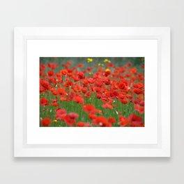 Poppy field 1820 Framed Art Print