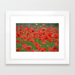 Poppy field 1820 Framed Art Print