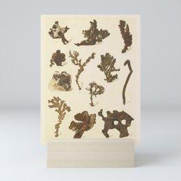 Copper Formations Mini Art Print