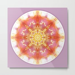 Mandalas for a New Earth 12 Metal Print