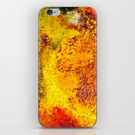 Andros iPhone Skin