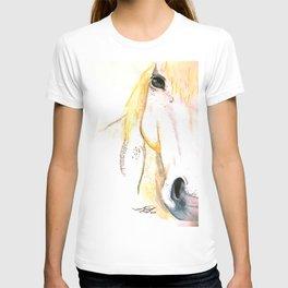 Frodo RDA Horse T-shirt