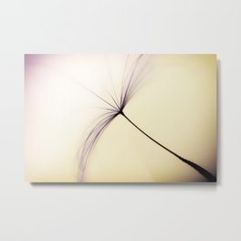 Whispered Wishes on a Dandelion Seed Metal Print