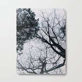 Black and White Sky Metal Print