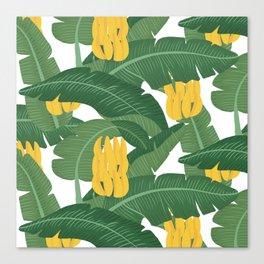 Bananas and Leaves - Bg White Canvas Print