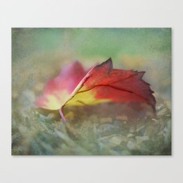 Leave me out  Canvas Print