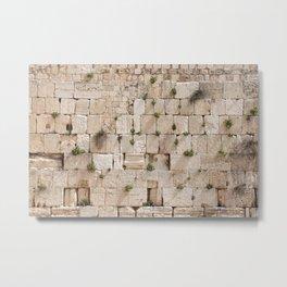 Vegetation on the Wailing Wall (Kotel) - Kotel art - Wall Fine Metal Print