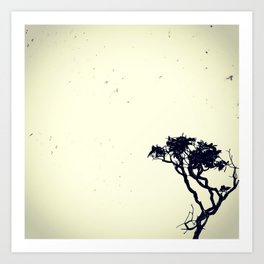 Swarm of baths and a lonely tree Art Print