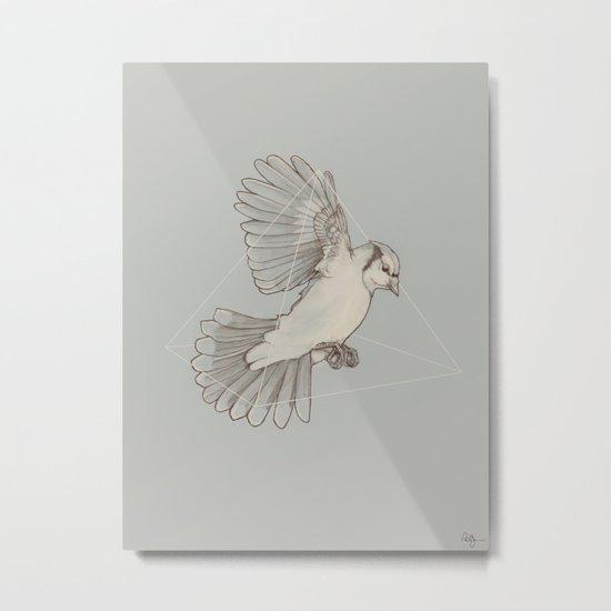 Dynamics of Flight Metal Print