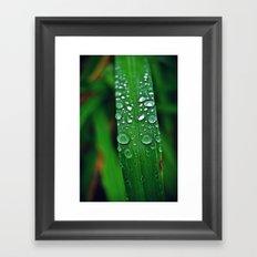 Rainy Drops (Color) Framed Art Print